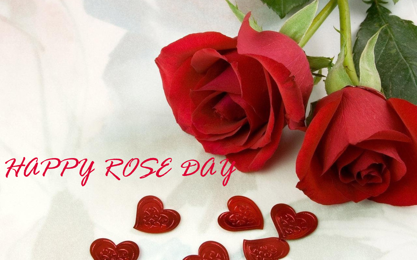 Rose Day Images, Pics, Quotes, Wishes, Photos
