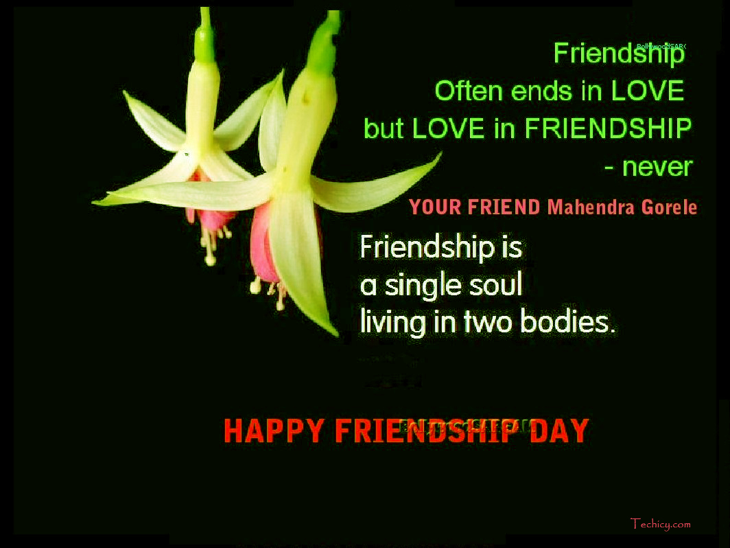 Adorable Friendship Day Greeting Cards